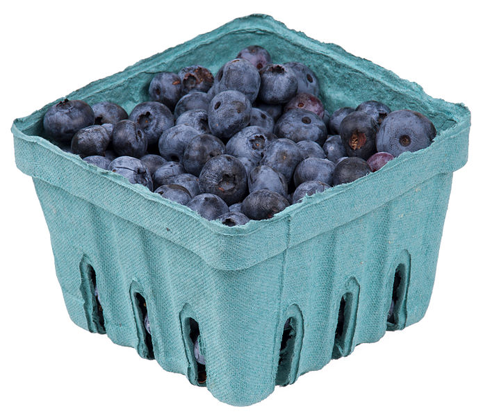 Blueberries in a moulded pulp punnet.